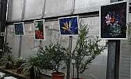 praga-prima-vystava-obrazu-botanicka-zahrada-03-